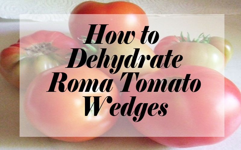 How to Dehydrate Roma Tomato Wedges