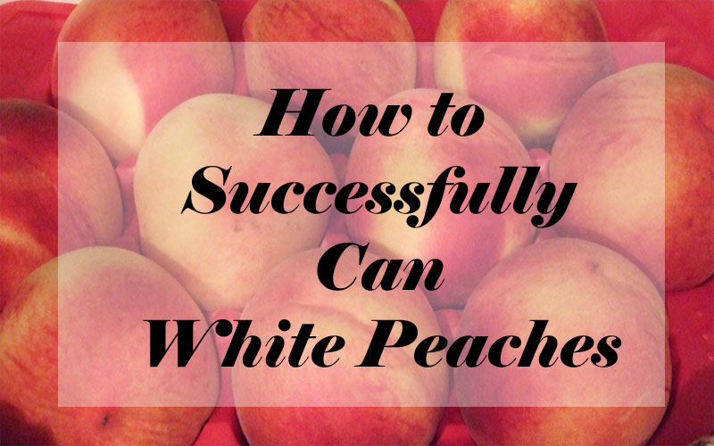 How to Successfully Can White Peaches
