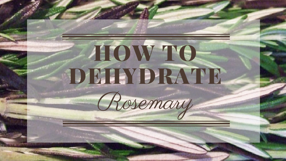 How to Dehydrate Rosemary