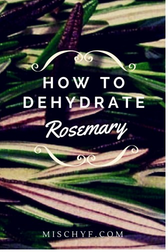 How to dehydrate rosemary https://mischyf.com/dehydrate-rosemary/