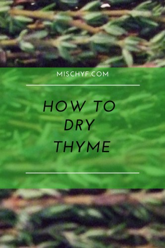 dehydrate thyme How to dry thyme pin