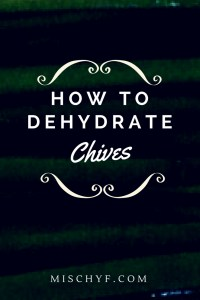 Dehydrate Chives - How to dry herbs #recipe #herbs #spice #chives #onion #dehydrate #dry #dried
