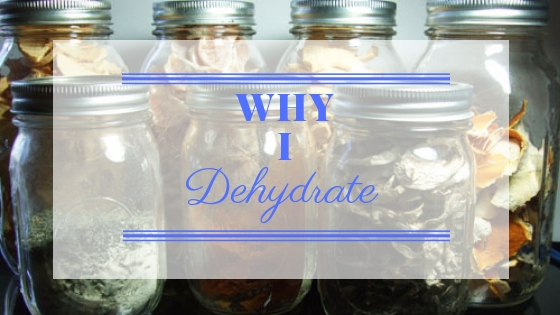 Why I Dehydrate Foods