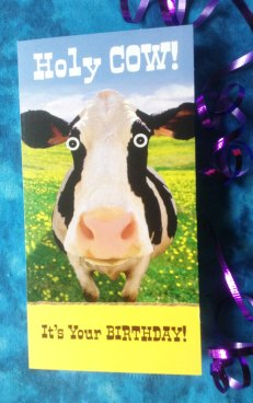 Cow Face in Camera. Card Front: Holy Cow! It's your Birthday! Card Inside: Can I get A MoO-HOo?