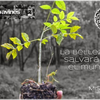 La belleza salvará el mundo · II