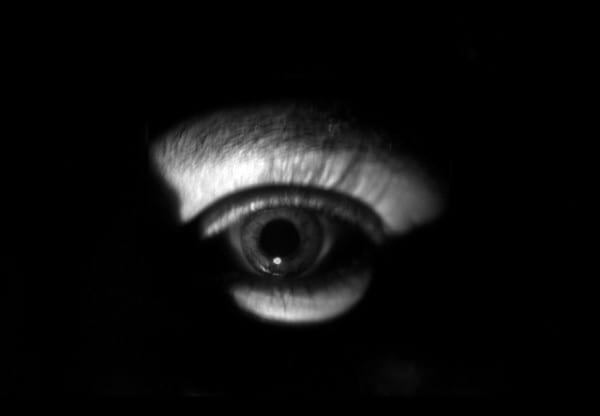 miedo-a-la-oscuridad_orquidea-vara_fobias_2