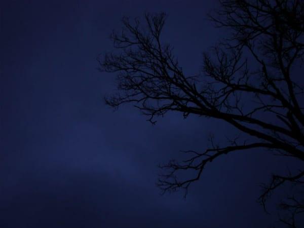 miedo-noche-oscuridad