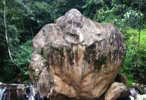 roca humana