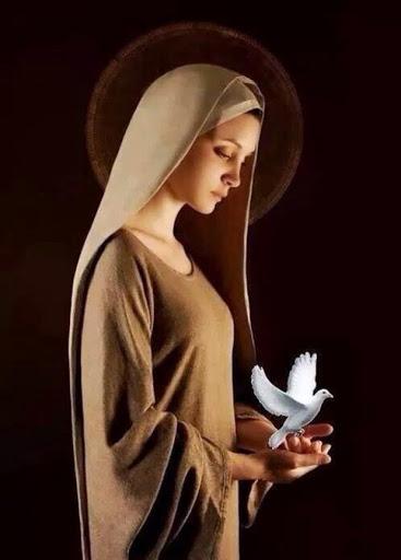 ilustração de Maria de perfil num fundo marrom escuro-segurando uma pomba branca