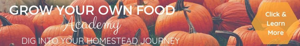 Wachsen Sie Ihre eigenen Lebensmittel adacemy