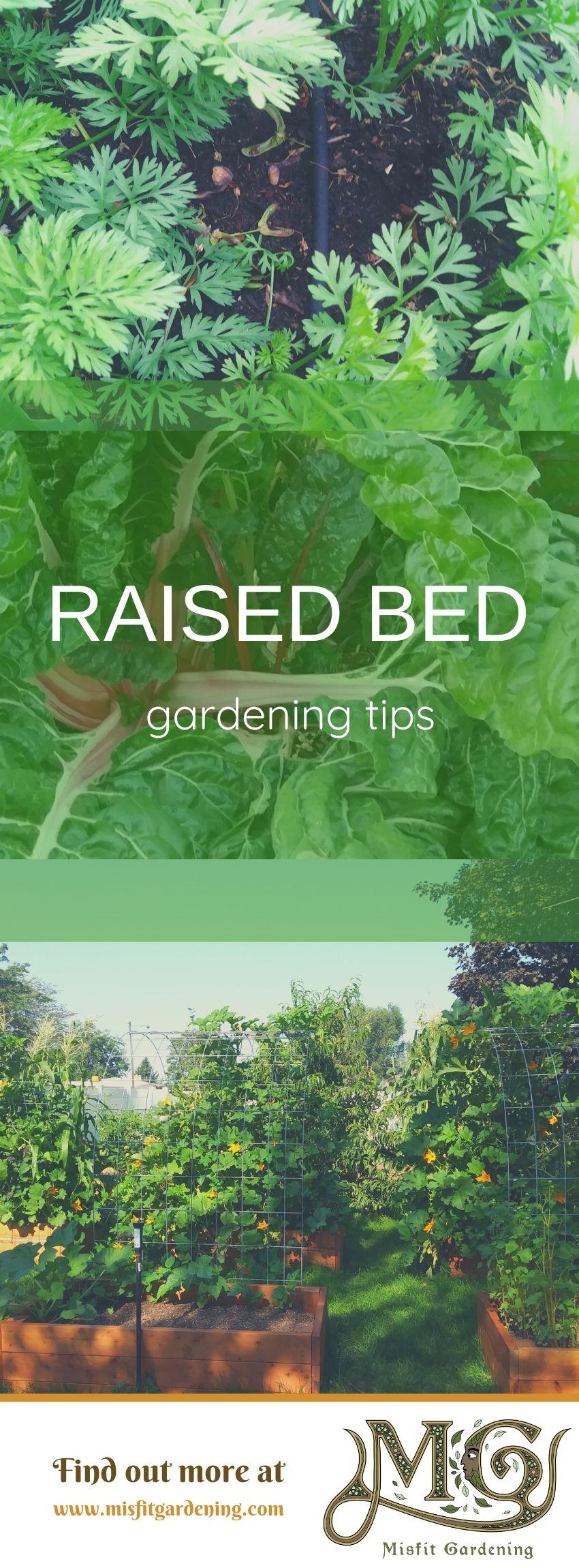 Klicken Sie hier, um mehr über die Gartenarbeit mit Hochbeeten zu erfahren, oder stecken Sie sie fest und speichern Sie sie für später. #Garten #Haushalt