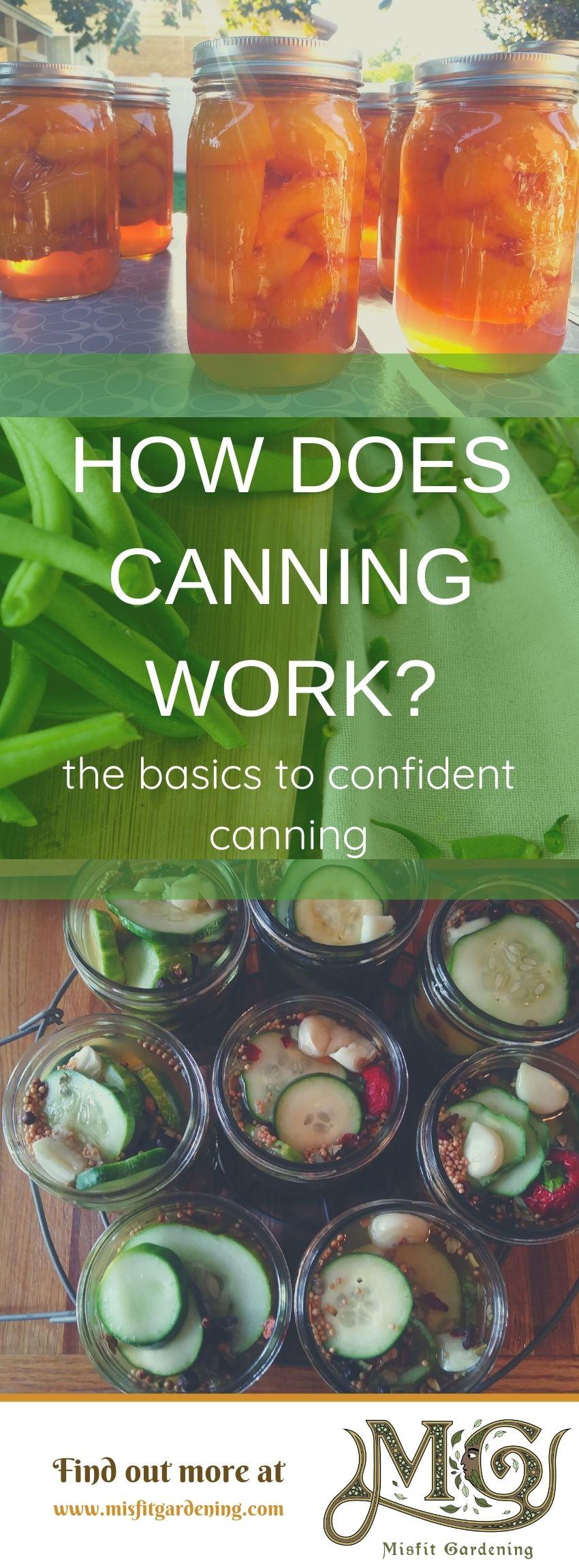 Klicken Sie hier, um zu sehen, wie das Einmachen funktioniert, oder stecken Sie es fest und speichern Sie es für später. #Homesteading #Canning