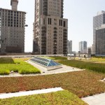 The Demise Of The Green Roof Misfits Architecture