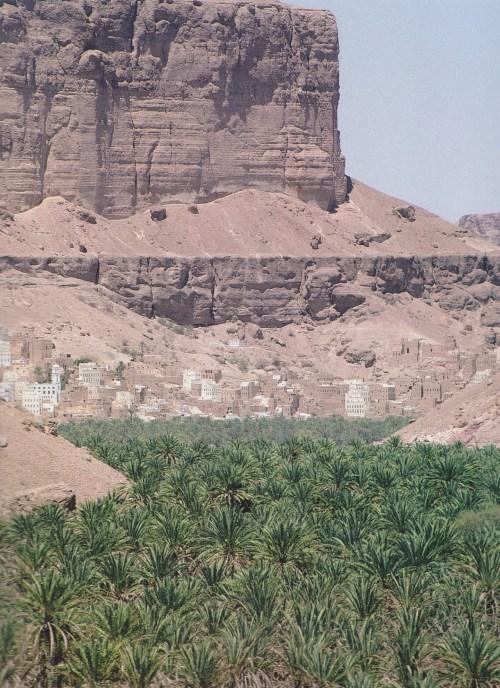 Wadi Hajr 2