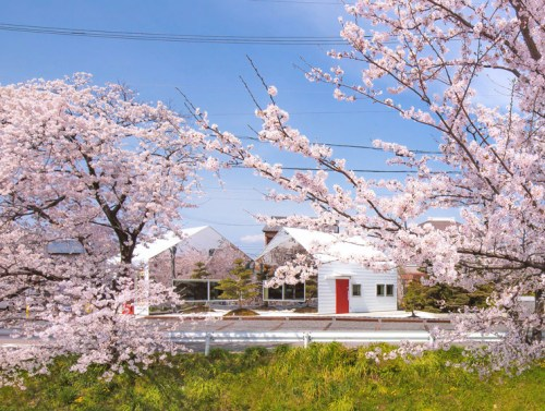 Mirrors-Cherry-Blossom-Cafe-Bandesign-Japan-2