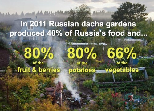 russian-dacha3
