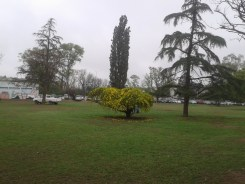 Feria-Agroecologica_0004