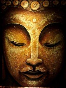 Spiritual Awakening - Misha Almira