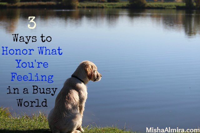 3 Ways to Honor What You're Feeling in a Busy World- Misha Almira
