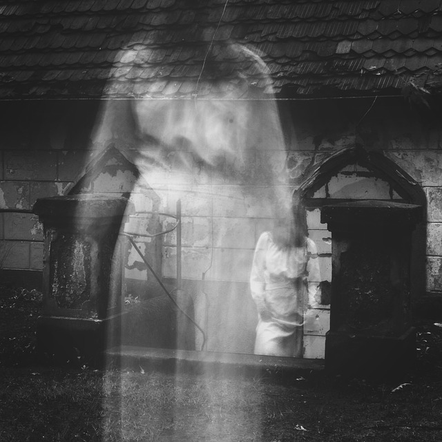Entities, Dark Energies, & Spirits - Misha Almira
