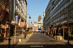 Skopje is my city, by Faruk Shehu (77)