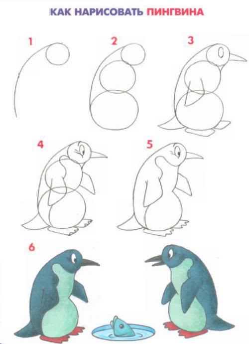 जानवरों और पक्षियों को आकर्षित करें