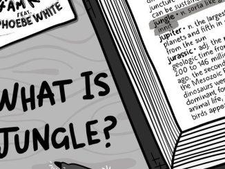 4am Kru x Phoebe White - What Is Jungle