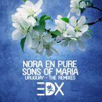 Nora En Pure & Sons Of Maria — Uruguay (EDX's Dubai Skyline Remix)