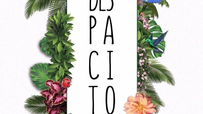Luis Fonsi ft. Daddy Yankee - Despacito (Pacheco e Diefentaler Bootleg) [Future House]