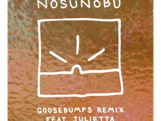 Nosunobu feat. Julietta - Goosebumps [Electronic, Deep House]