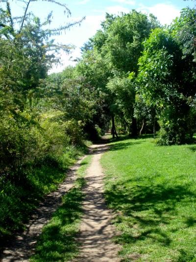 My running trail in Sydney
