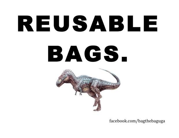 Bag the bag flyer