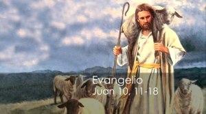 Juan 10, 11-18