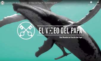 video-del-papa-proteccion-de-los-oceanos