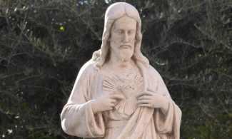 amas-corazon-jesus