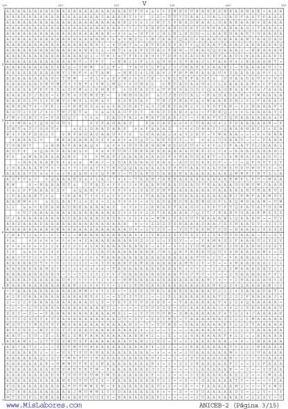 Página del gráfico de punto de cruz ANICEB-2