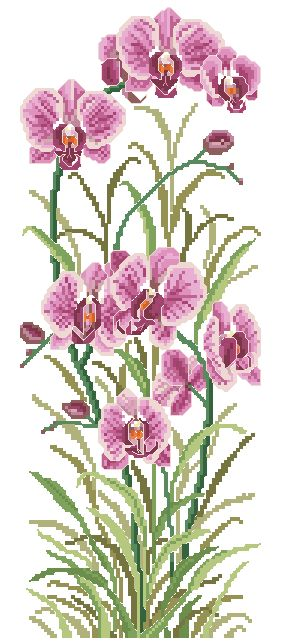 ORCHID-1: bordado a punto de cruz de orquídea rosada