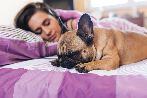 Un perro y una mujer duermen en una cama.