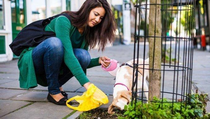 Mujer responsable de limpiar la acera en Londres, Notting Hill.