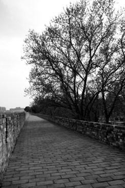 Nanjing (11)