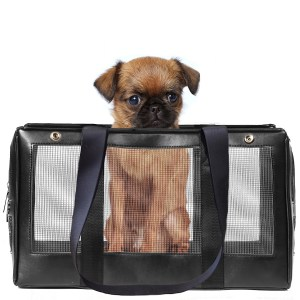dog carrier mesh top and sides