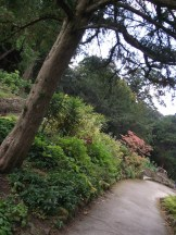 Lyme Park 2016
