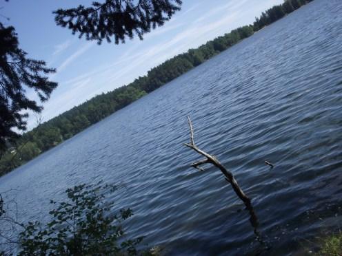 Beaver Lake 2017