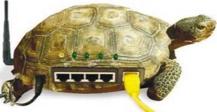 الكشف عن أسباب تراجع سرعة الإنترنت فى مصر