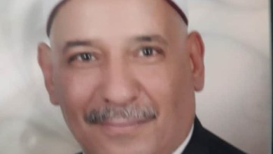 Photo of أوقاف الأسكندرية.. تحصد نجمة فى مشروع صكوك الاضاحى.