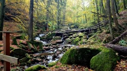 Untere Ilsefälle im Harz