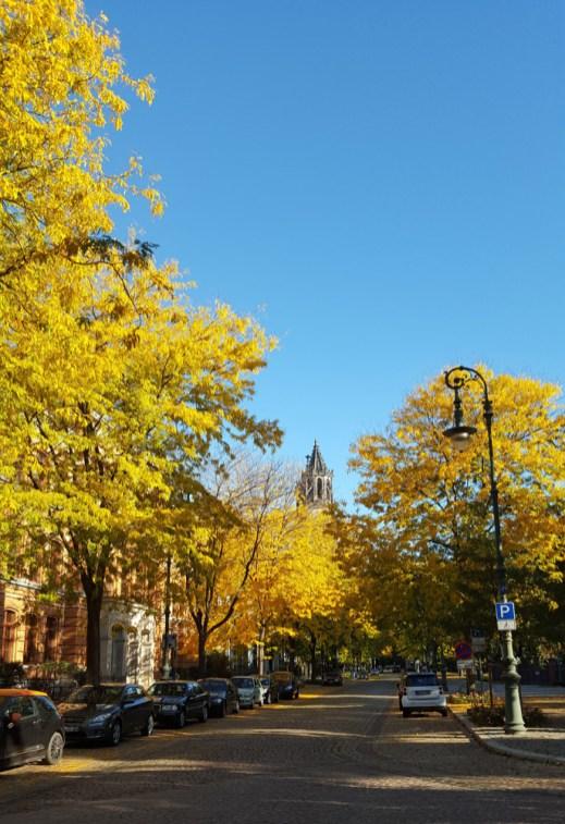 Hegelstraße Magdeburg im Herbst mit Domblick