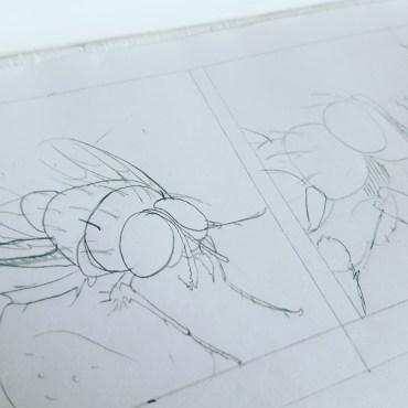 Ich habe eine Fliege gezeichnet