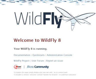 20171207_wildfly