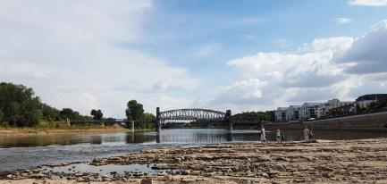 Die Elbe vom Domfelsen in Magdeburg aus im trockenen Sommer 07/2018